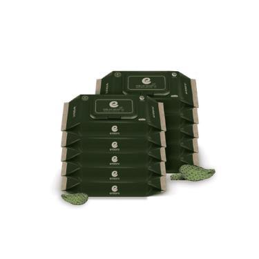 韓國ENBLANC  新生兒極柔純水濕紙巾32抽-極厚仙人掌 x10包-廠送